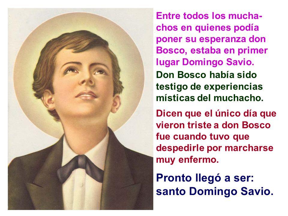 Para toda esta gran obra, don Bosco necesitaba muchos y buenos colaboradores.