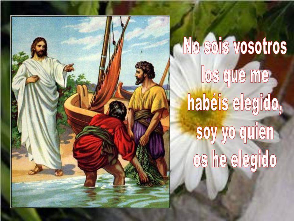 Ya no os llamo siervos, porque el siervo no sabe lo que hace su señor; a vosotros os llamo amigos, porque todo lo que he oído a mi Padre os lo he dado a conocer.
