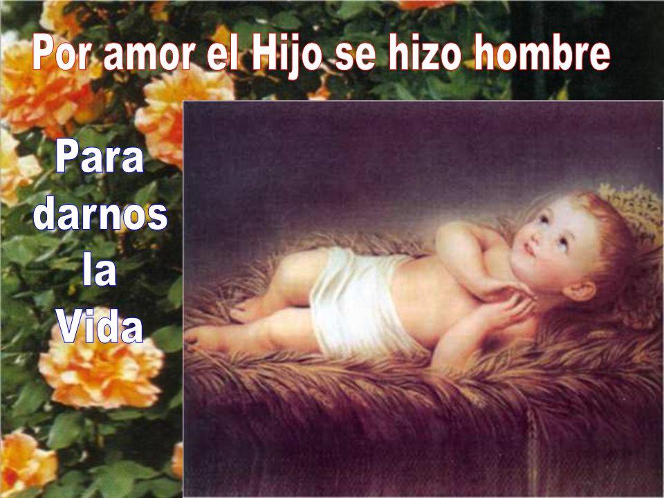 El amor de Dios trinitario se hizo palpable para nosotros en la persona de Jesucristo.