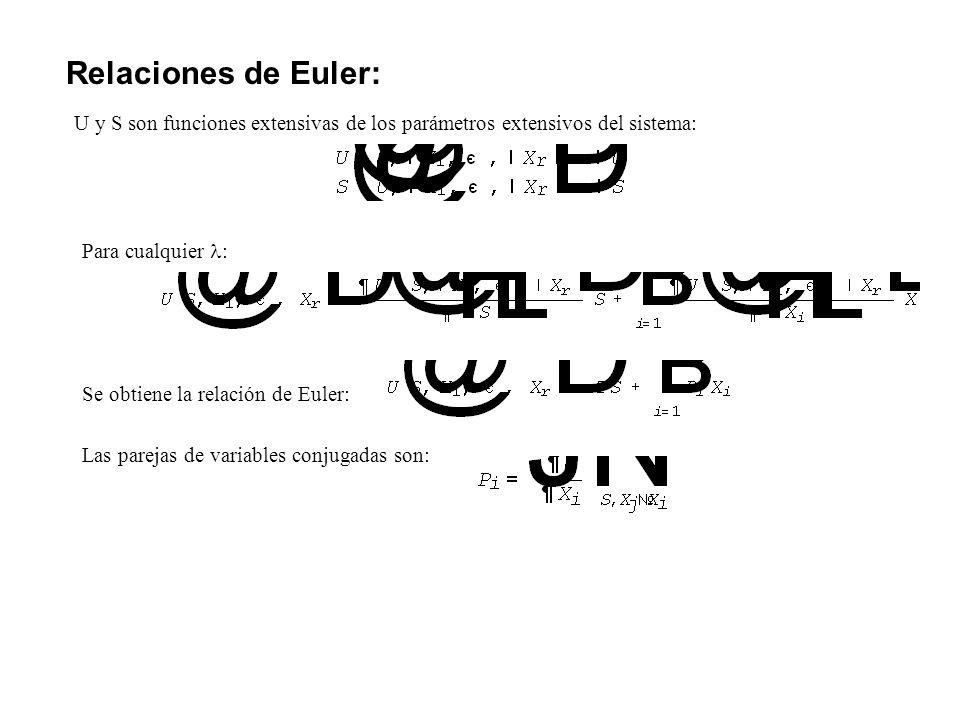 Relaciones de Euler: U y S son funciones extensivas de los parámetros extensivos del sistema: Para cualquier : Se obtiene la relación de Euler: Las pa