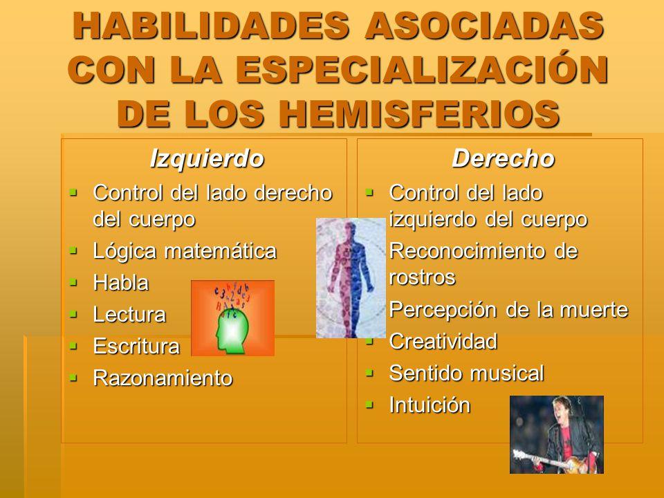 HABILIDADES ASOCIADAS CON LA ESPECIALIZACIÓN DE LOS HEMISFERIOS Izquierdo Izquierdo Control del lado derecho del cuerpo Control del lado derecho del c