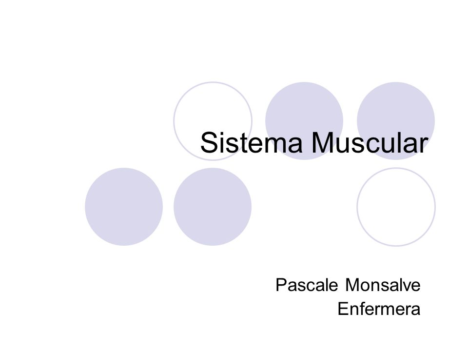 Sistema Muscular Pascale Monsalve Enfermera
