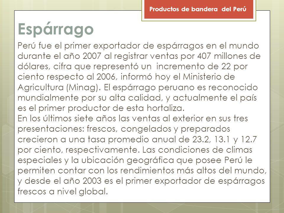 Espárrago Perú fue el primer exportador de espárragos en el mundo durante el año 2007 al registrar ventas por 407 millones de dólares, cifra que representó un incremento de 22 por ciento respecto al 2006, informó hoy el Ministerio de Agricultura (Minag).