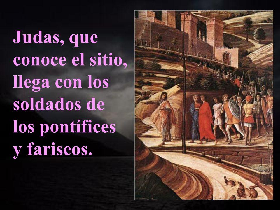 Comienza hoy el relato de la Pasión, después de la cena, saliendo Jesús con sus discípulos hacia el huerto de los olivos.