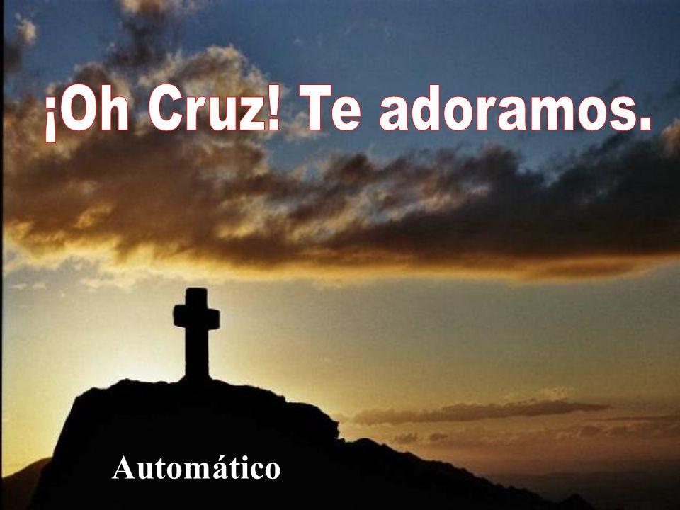 Madero del Calvario, Jesús de ti pendió,