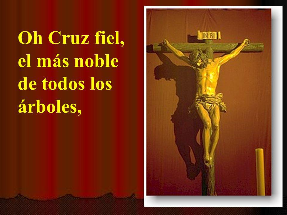 Oh Cruz fiel, el más noble de todos los árboles,