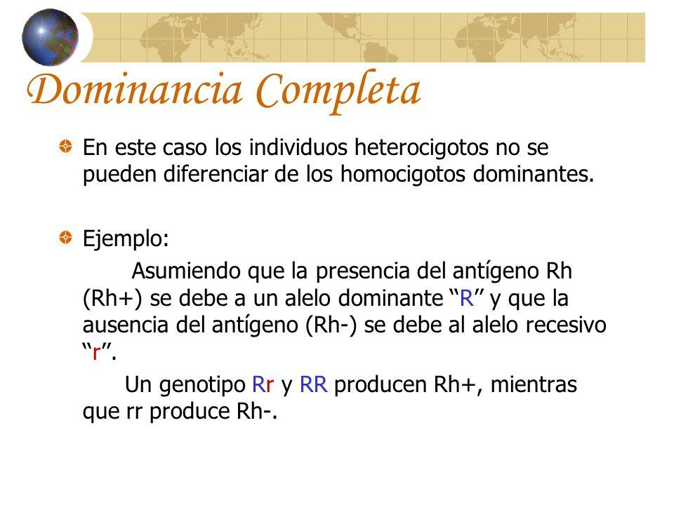 Dominancia Completa En este caso los individuos heterocigotos no se pueden diferenciar de los homocigotos dominantes. Ejemplo: Asumiendo que la presen