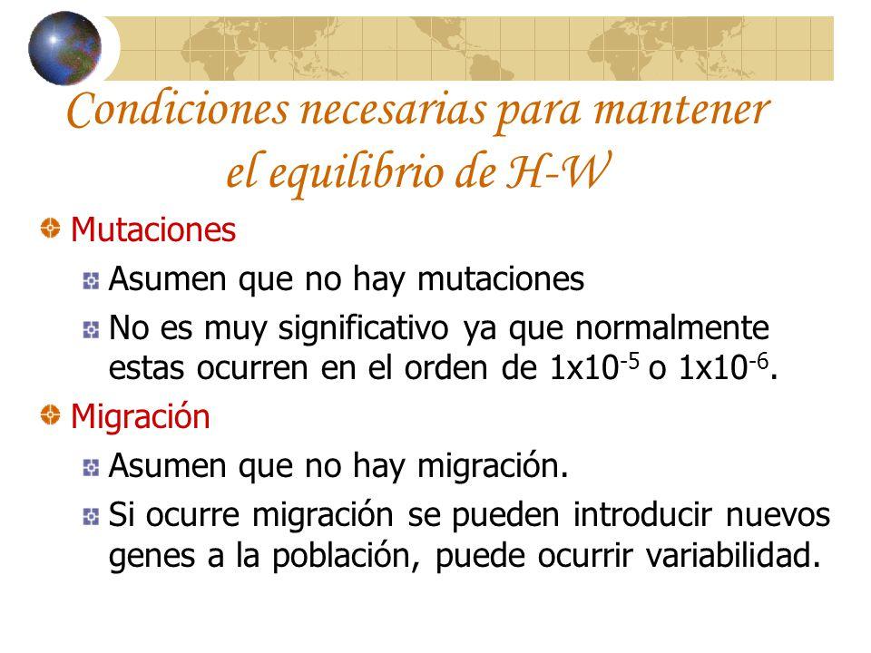 Condiciones necesarias para mantener el equilibrio de H-W Mutaciones Asumen que no hay mutaciones No es muy significativo ya que normalmente estas ocu