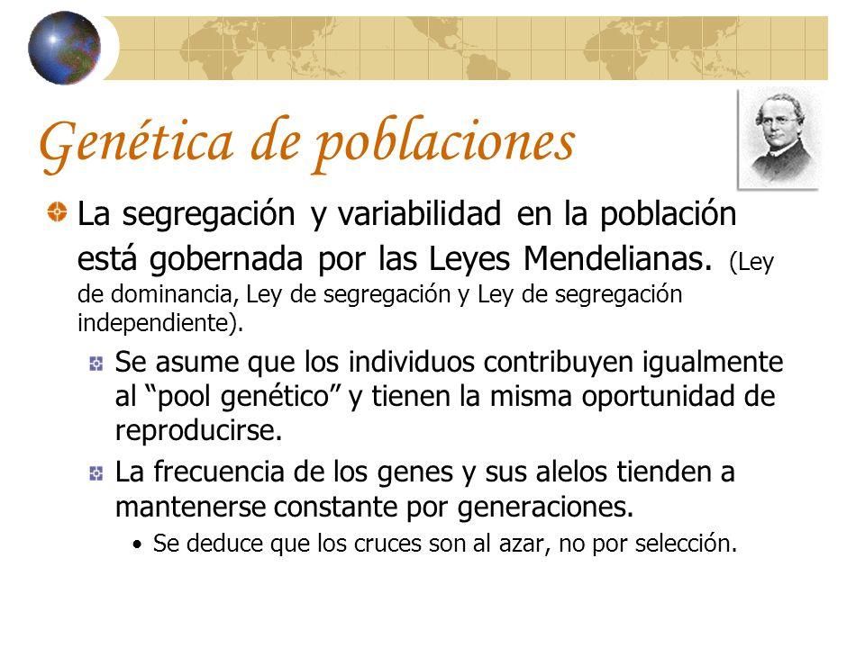 Genética de poblaciones La segregación y variabilidad en la población está gobernada por las Leyes Mendelianas. (Ley de dominancia, Ley de segregación