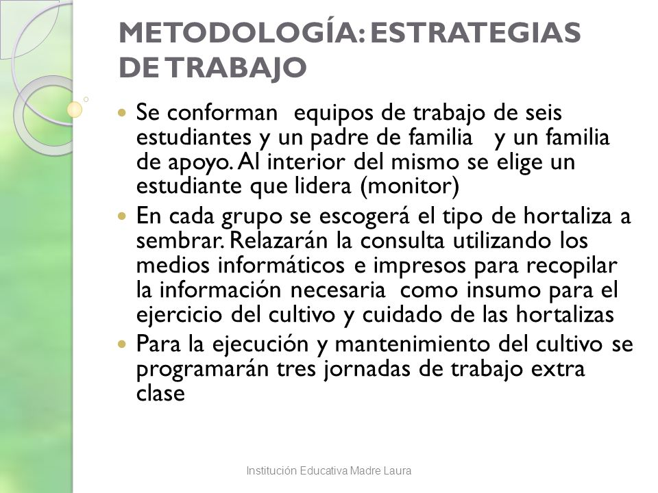 METODOLOGÍA: ESTRATEGIAS DE TRABAJO Se conforman equipos de trabajo de seis estudiantes y un padre de familia y un familia de apoyo. Al interior del m