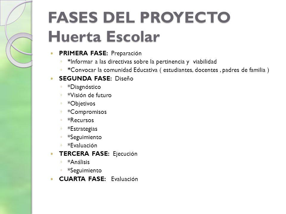 FASES DEL PROYECTO Huerta Escolar PRIMERA FASE: Preparación *Informar a las directivas sobre la pertinencia y viabilidad *Convocar la comunidad Educat