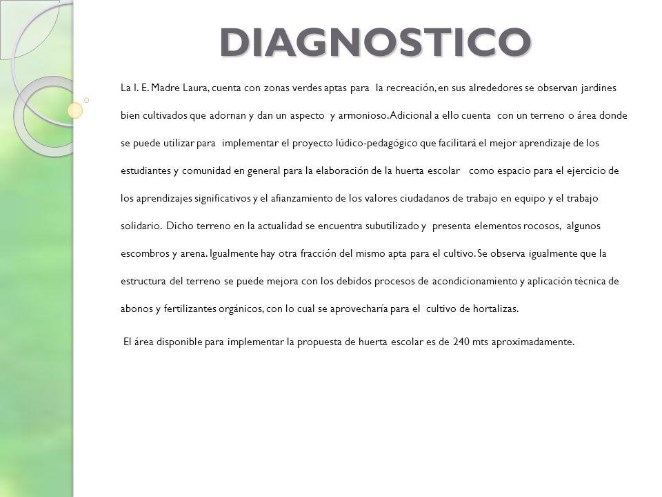 DIAGNOSTICO La I.E.
