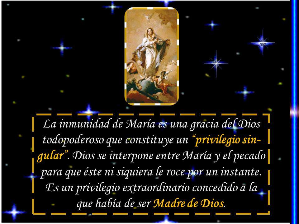 La inmunidad de María es una gracia del Dios todopoderoso que constituye un privilegio sin- gular.