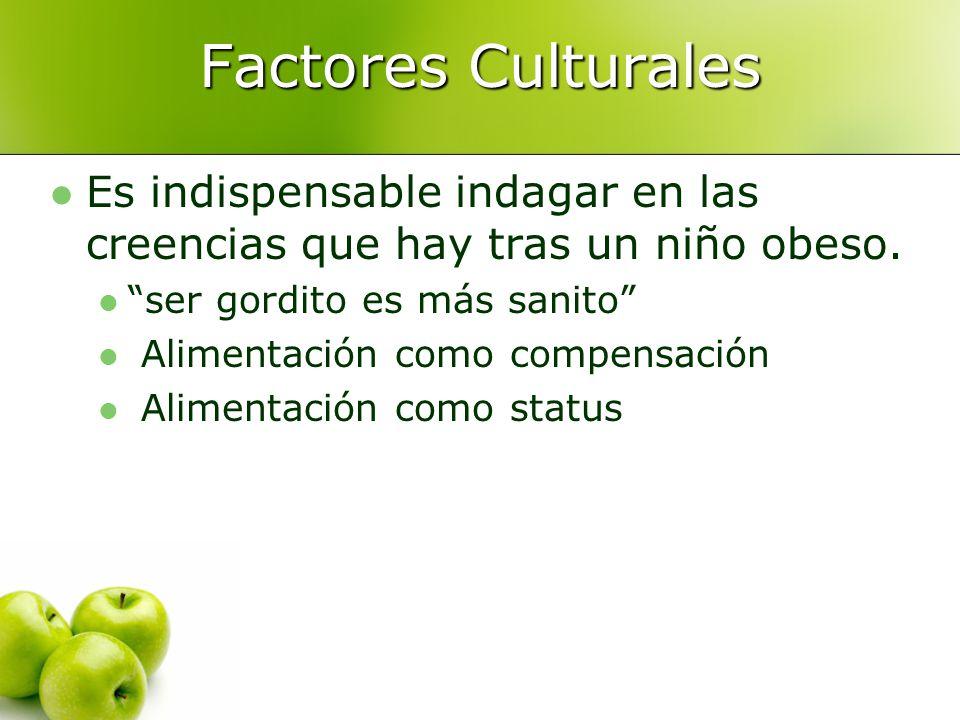 Factores Culturales Es indispensable indagar en las creencias que hay tras un niño obeso.