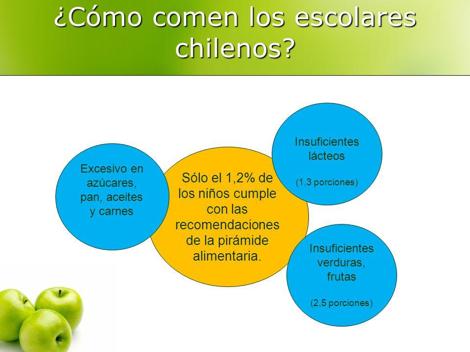 ¿Cómo comen los escolares chilenos? Sólo el 1,2% de los niños cumple con las recomendaciones de la pirámide alimentaria. Excesivo en azúcares, pan, ac
