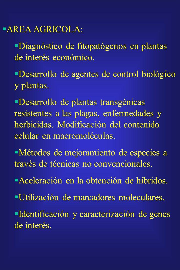 AREAS TEMATICAS PRIORITARIAS SALUD: Vacunas (desarrollo de vacunas por procedimientos que utilicen ingeniería genética). Reactivos de diagnóstico: Des