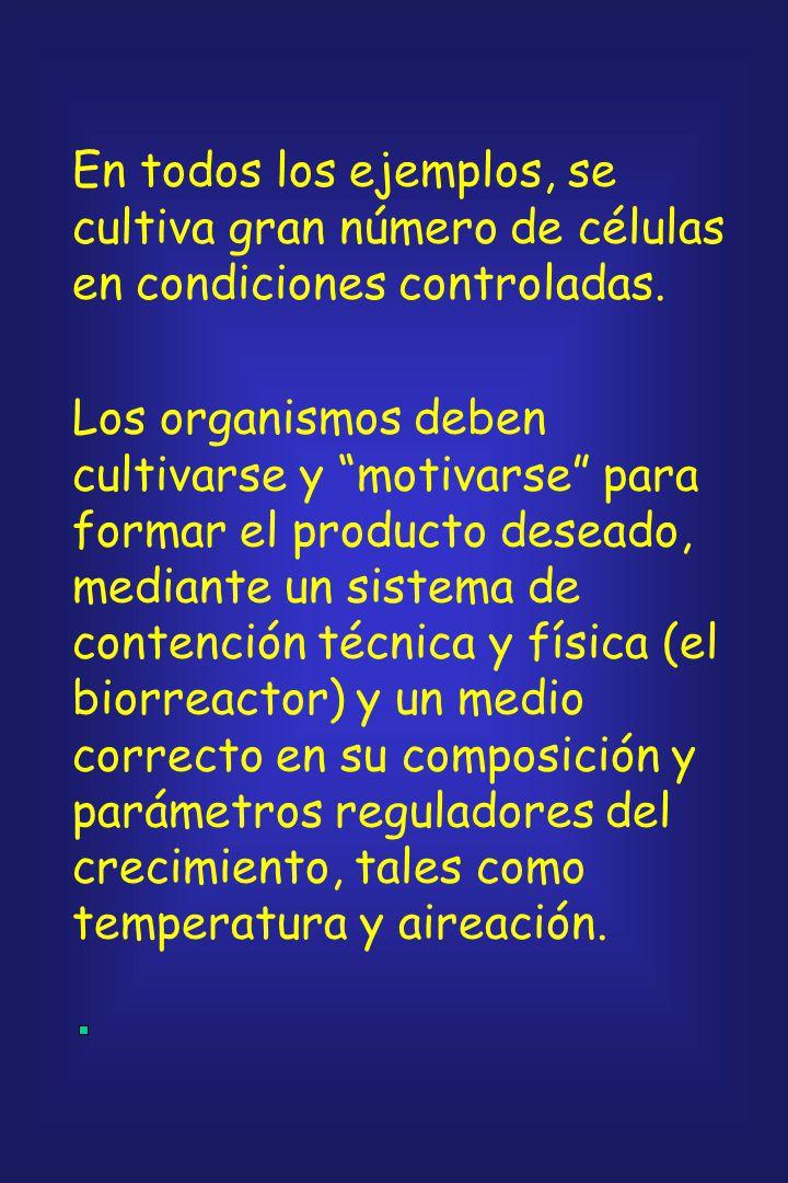 Las etapas en la manufactura de productos en la tecnología de bioprocesos son, esencialmente, similares independientemente del organismo utilizado, de