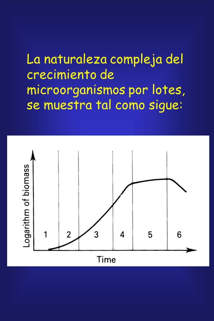 El ambiente nutricional dentro del biorreactor cambia en forma continua y, por lo tanto, fuerza cambios en el metabolismo celular. Eventualmente, la m