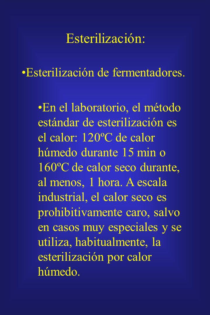Los fermentadores deben ser vaciados, limpiados, esterilizados y recargados antes de cada fermentación, operaciones todas esenciales pero no productiv