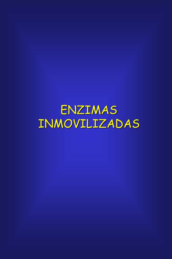 Objetivos en la preparación de enzimas modificadas: 1.Aumentar la actividad de las enzimas 2.Mejorar la estabilidad 3.Permitir que funcionen en un amb