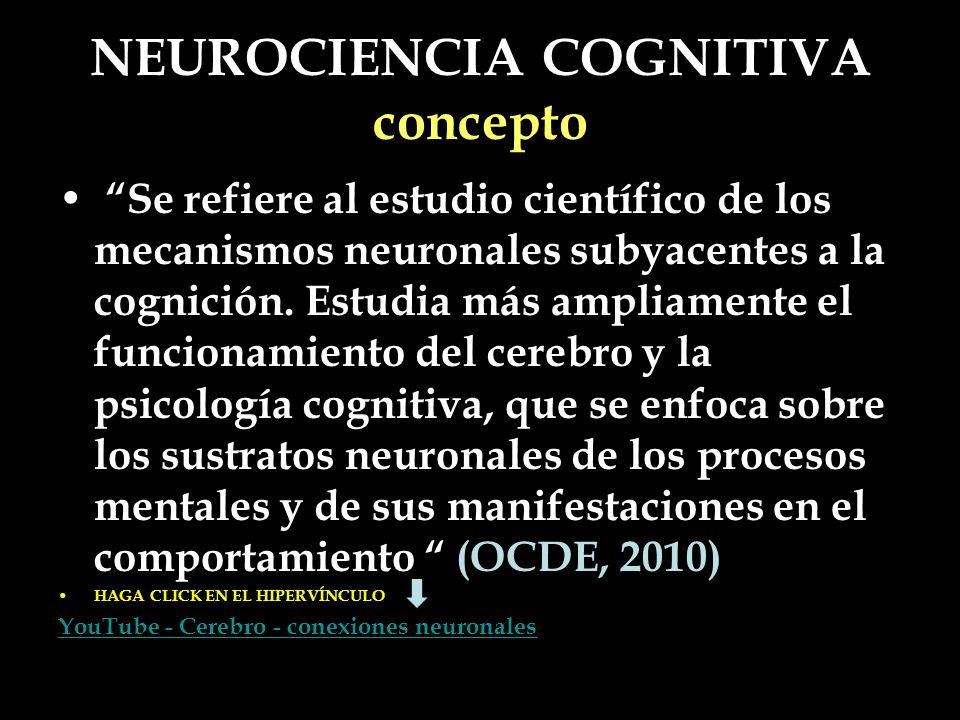 NEUROCIENCIA COGNITIVA concepto Se refiere al estudio científico de los mecanismos neuronales subyacentes a la cognición. Estudia más ampliamente el f