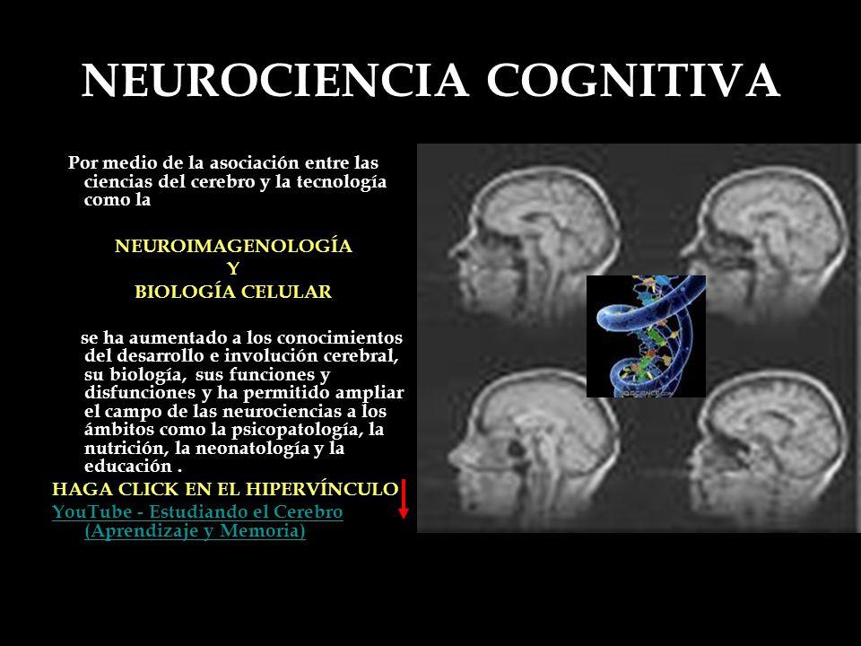 NEUROCIENCIA COGNITIVA Por medio de la asociación entre las ciencias del cerebro y la tecnología como la NEUROIMAGENOLOGÍA Y BIOLOGÍA CELULAR se ha au
