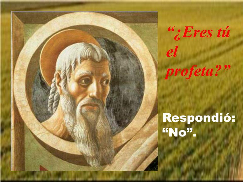 Él dijo: