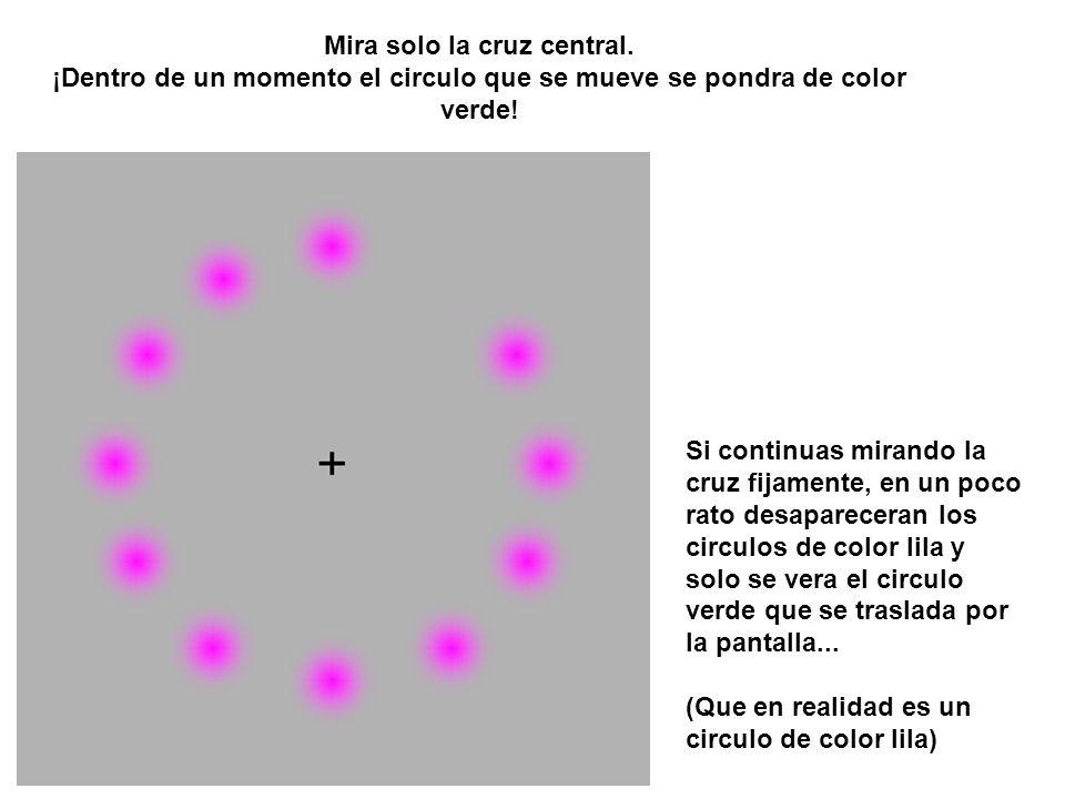 Mira solo la cruz central.¡Dentro de un momento el circulo que se mueve se pondra de color verde.