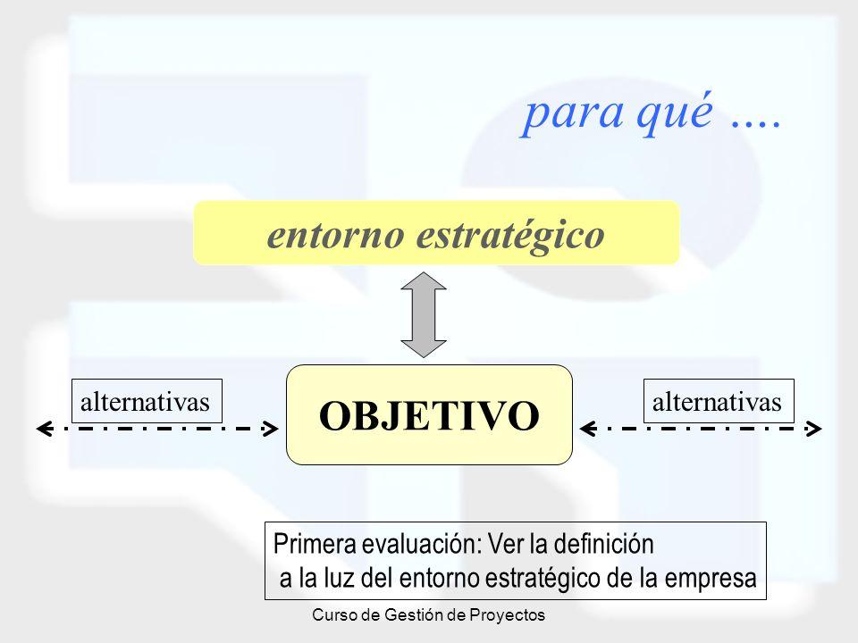 Curso de Gestión de Proyectos para qué …. OBJETIVO entorno estratégico alternativas Primera evaluación: Ver la definición a la luz del entorno estraté