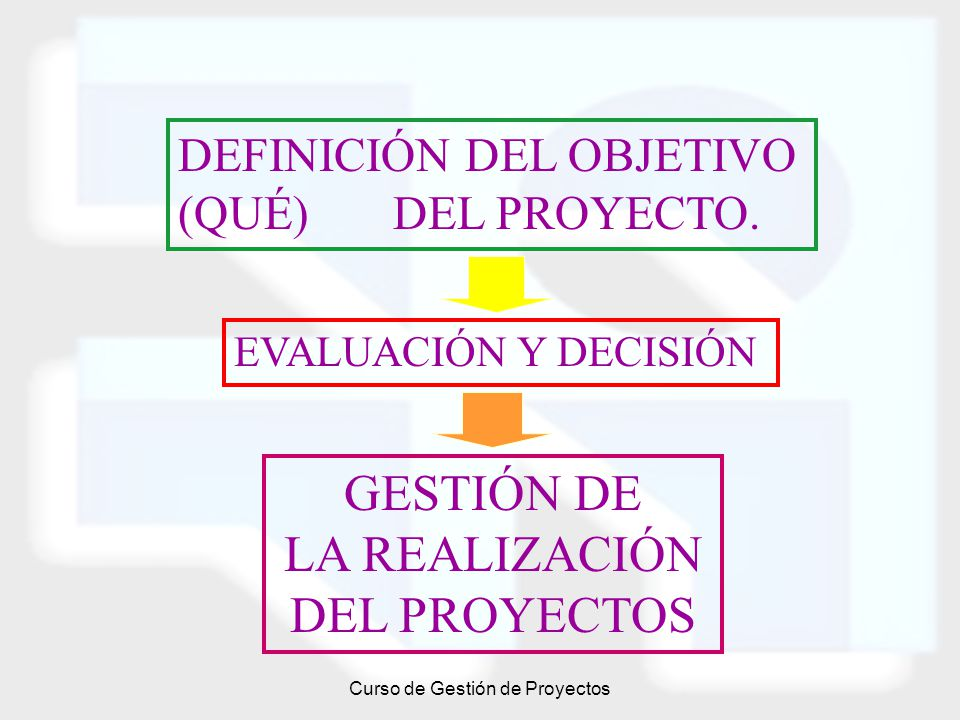 Curso de Gestión de Proyectos DEFINICIÓN DEL OBJETIVO (QUÉ) DEL PROYECTO. EVALUACIÓN Y DECISIÓN GESTIÓN DE LA REALIZACIÓN DEL PROYECTOS