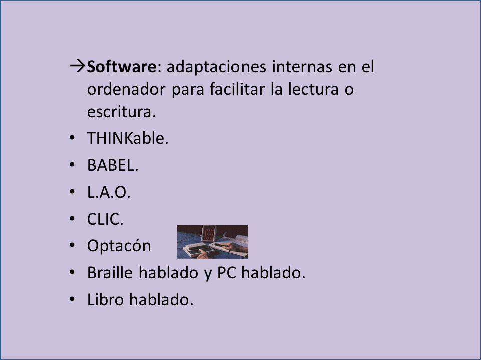 Software: adaptaciones internas en el ordenador para facilitar la lectura o escritura.