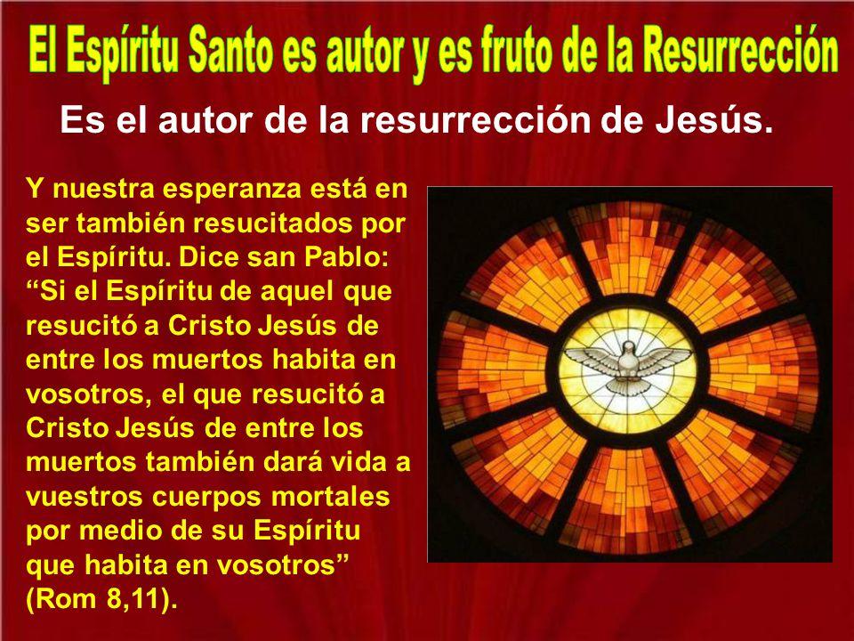 En la Última Cena Jesús les había dicho a los apóstoles que les iba a enviar otro consolador o abogado. Era el símbolo de cuando una persona se queda