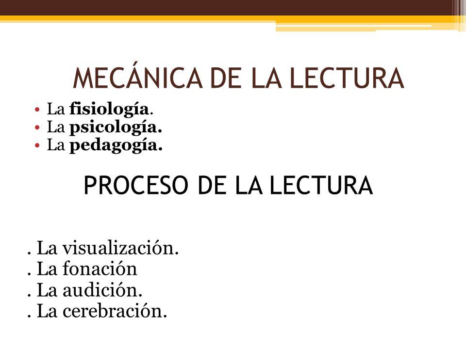 MECÁNICA DE LA LECTURA La fisiología. La psicología. La pedagogía. PROCESO DE LA LECTURA. La visualización.. La fonación. La audición.. La cerebración