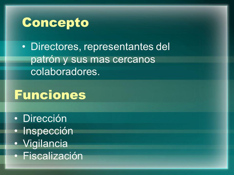 Concepto Directores, representantes del patrón y sus mas cercanos colaboradores. Funciones Dirección Inspección Vigilancia Fiscalización