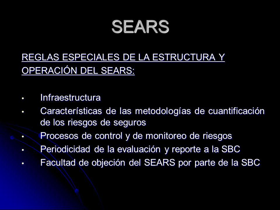 SEARS REGLAS ESPECIALES DE LA ESTRUCTURA Y OPERACIÓN DEL SEARS: Infraestructura Infraestructura Características de las metodologías de cuantificación