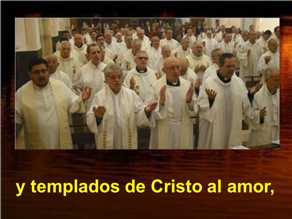 sacerdotes logró suscitar,