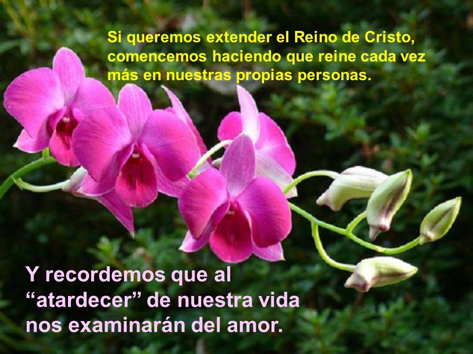 Haciendo el bien es como podemos hacer que el Reino de Dios sea apetecible.