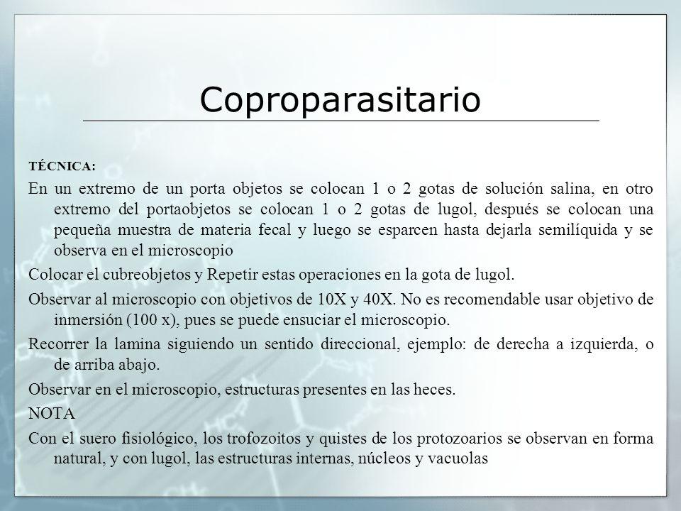 Coproparasitario TÉCNICA: En un extremo de un porta objetos se colocan 1 o 2 gotas de solución salina, en otro extremo del portaobjetos se colocan 1 o