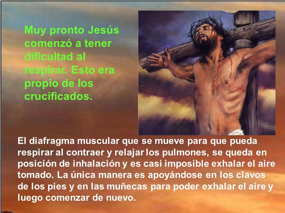 Jesús en la Cruz se ve envuelto en un mar de insultos, de burlas y de blasfemias. Pero Jesús rezaba:Padre, perdónales porque no saben lo que hacen. Je