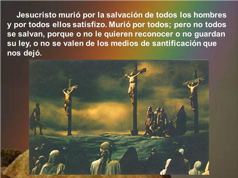 Con Jesús la cruz deja de ser instrumento de suplicio y se convierte en madero santo, cruz gloriosa, fuerza de Dios y fuente de salvación para el mund
