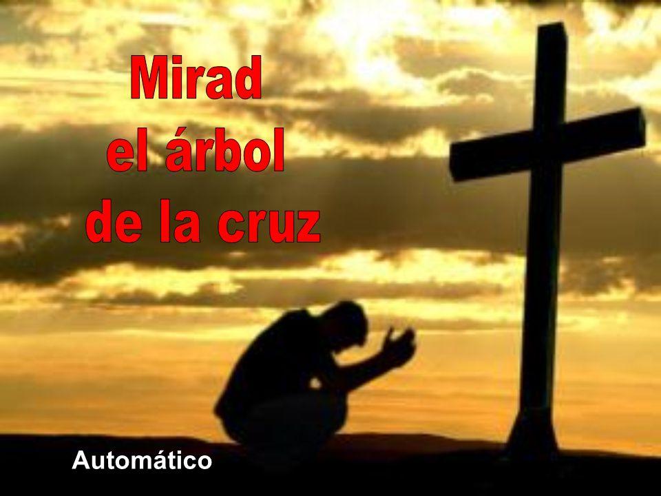 La cruz pone al descubierto el pecado y revela el amor. Por la cruz, Dios «destituyendo por medio de Cristo a los principados y potestades, los ofreci