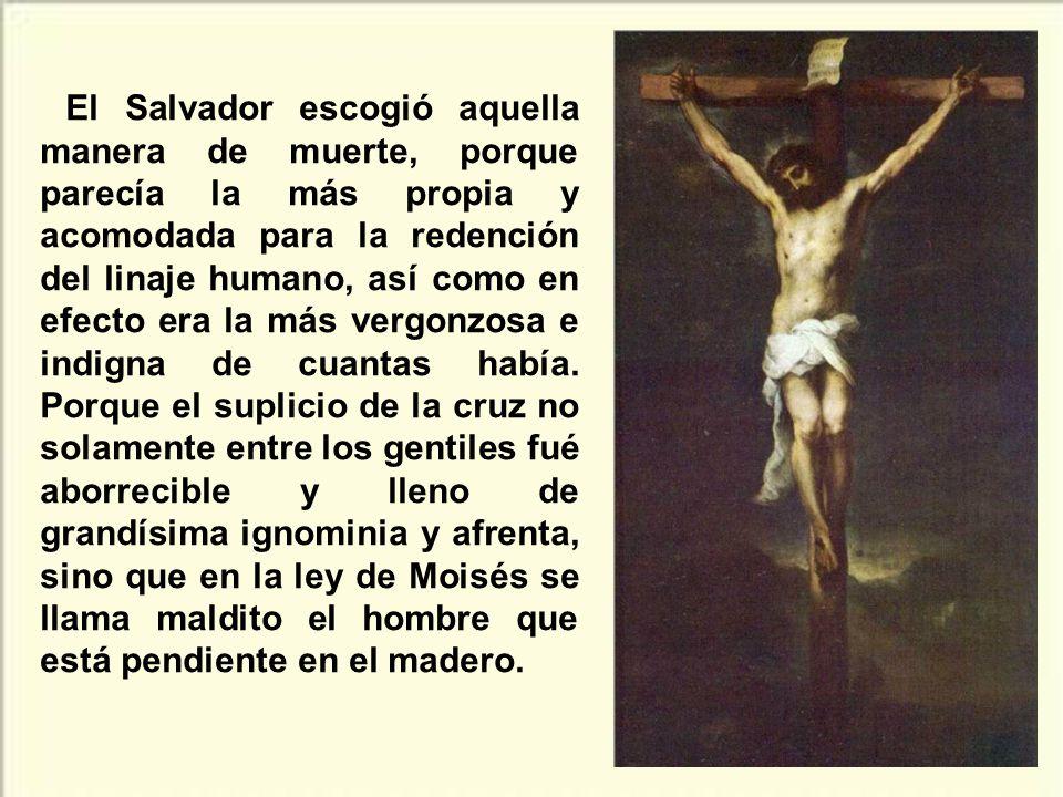 En el abismo del mal humano, que condena a morir en cruz al Hijo, se manifiesta en toda su plenitud el abismo inagotable del amor del Padre, que entre