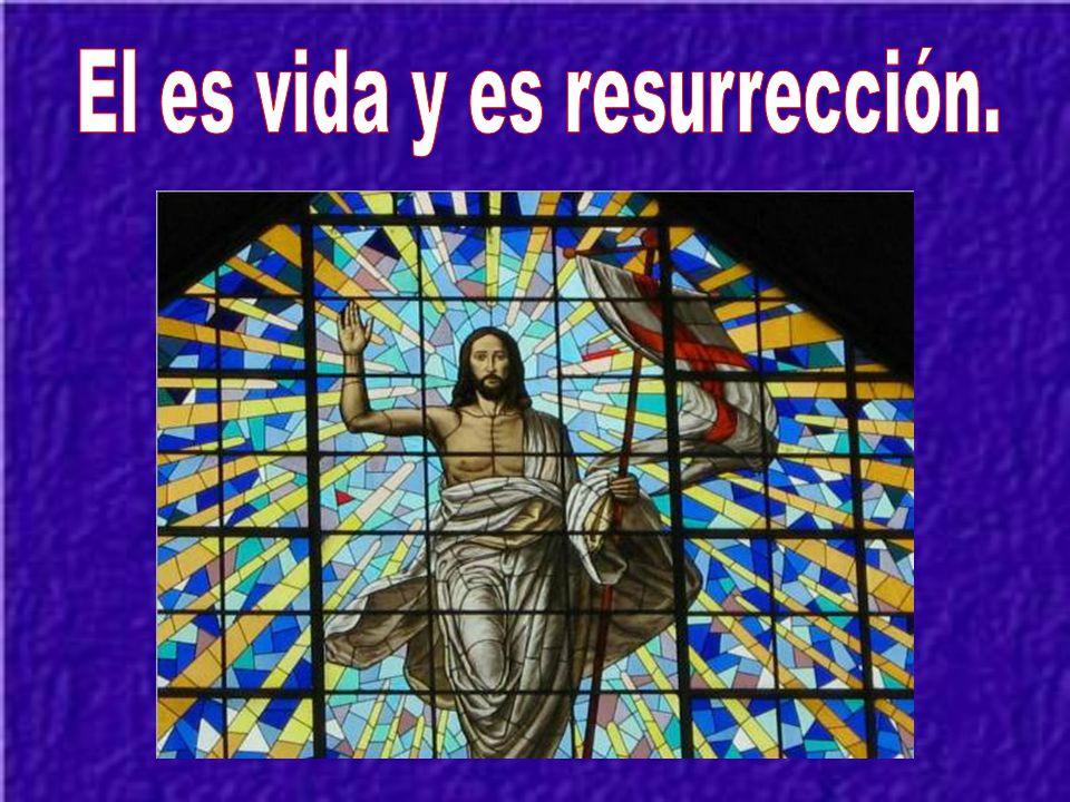 Nuestra gloria es la cruz del Señor de quien viene nuestra salvación.