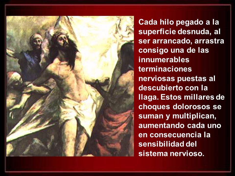 Así pasaron tres interminables horas y a la hora novena (como las 3 de la tarde), Jesus clamó a gran voz, diciendo: Eloi, Eloi, lama sabactani.