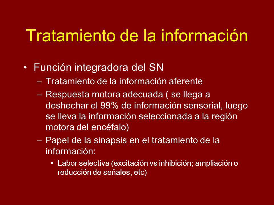 Tratamiento de la información Función integradora del SN –Tratamiento de la información aferente –Respuesta motora adecuada ( se llega a deshechar el