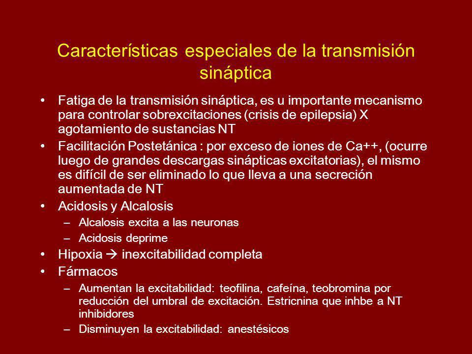 Características especiales de la transmisión sináptica Fatiga de la transmisión sináptica, es u importante mecanismo para controlar sobrexcitaciones (crisis de epilepsia) X agotamiento de sustancias NT Facilitación Postetánica : por exceso de iones de Ca++, (ocurre luego de grandes descargas sinápticas excitatorias), el mismo es difícil de ser eliminado lo que lleva a una secreción aumentada de NT Acidosis y Alcalosis –Alcalosis excita a las neuronas –Acidosis deprime Hipoxia inexcitabilidad completa Fármacos –Aumentan la excitabilidad: teofilina, cafeína, teobromina por reducción del umbral de excitación.