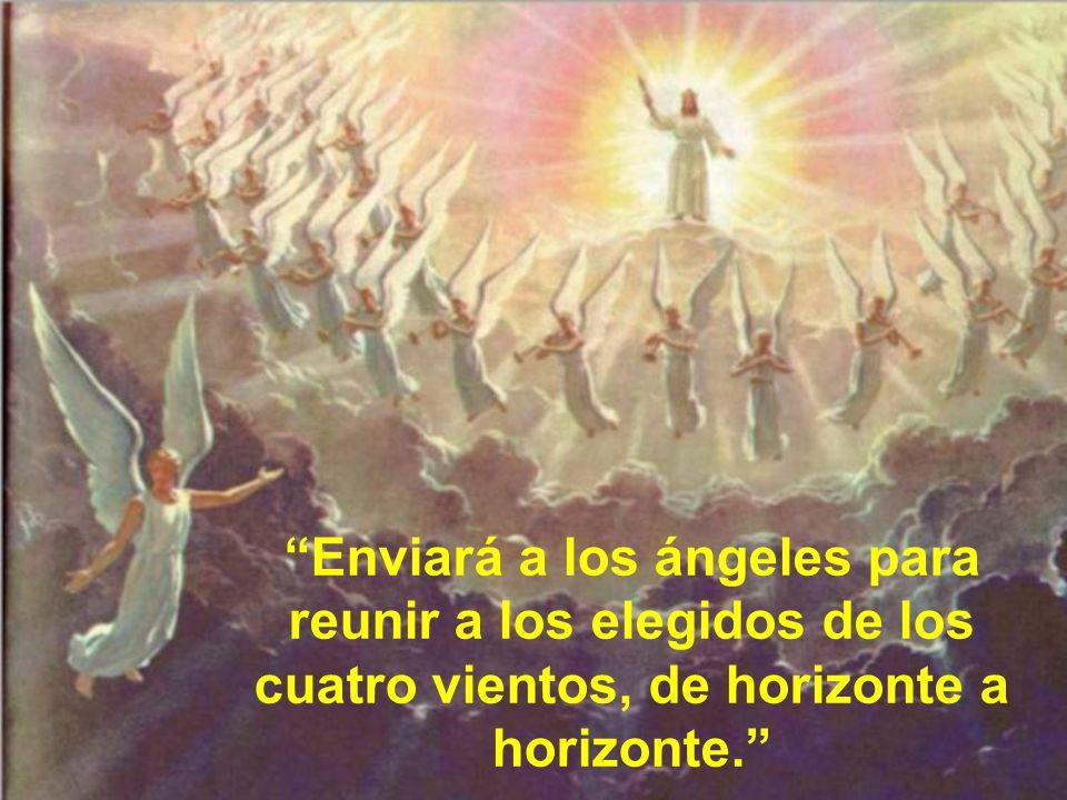 Entonces verán venir al Hijo del hombre sobre las nubes. Si amamos a Jesús debemos alegrarnos de que venga entre resplandores de alegría. Es el Dios d