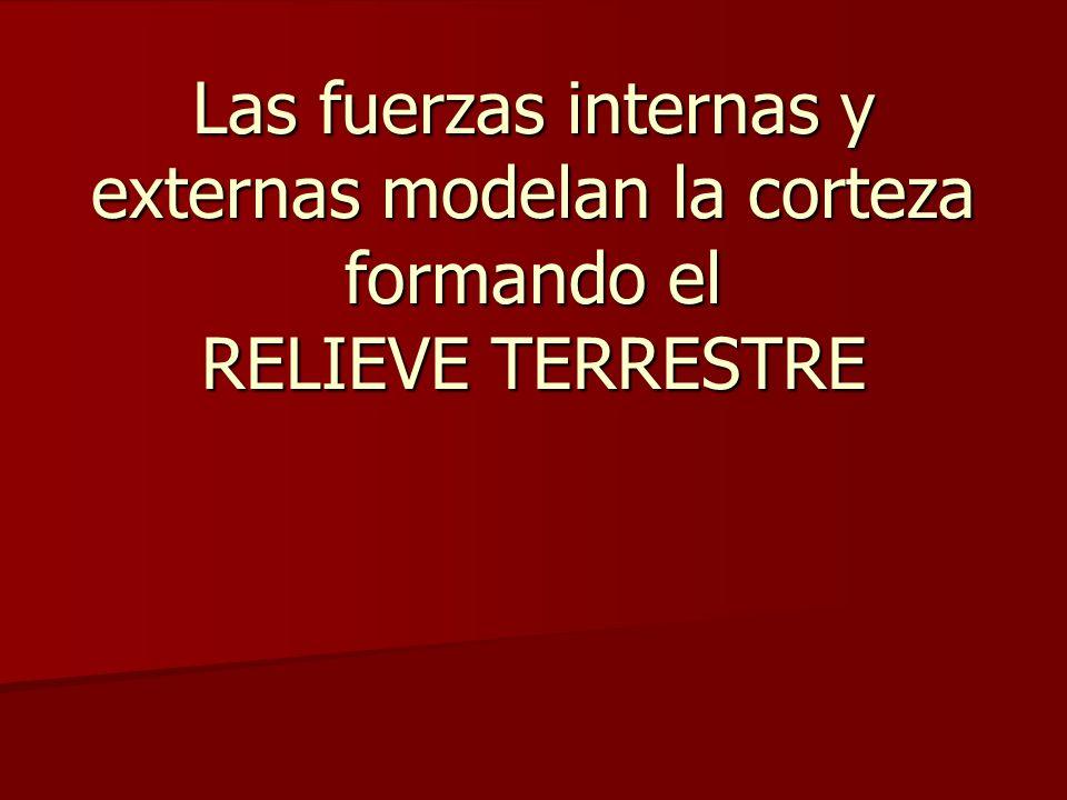 Las fuerzas internas y externas modelan la corteza formando el RELIEVE TERRESTRE