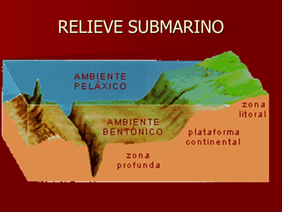 RELIEVE SUBMARINO