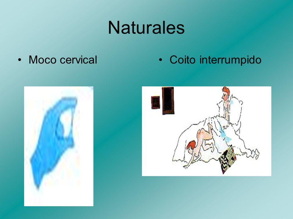 Naturales Sintotérmico Lactancia materna prolongada